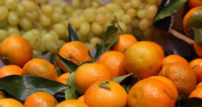 Oare de ce se vând clementinele cu tot cu frunze?