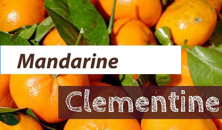 Diferența esențială dintre mandarine si clementine