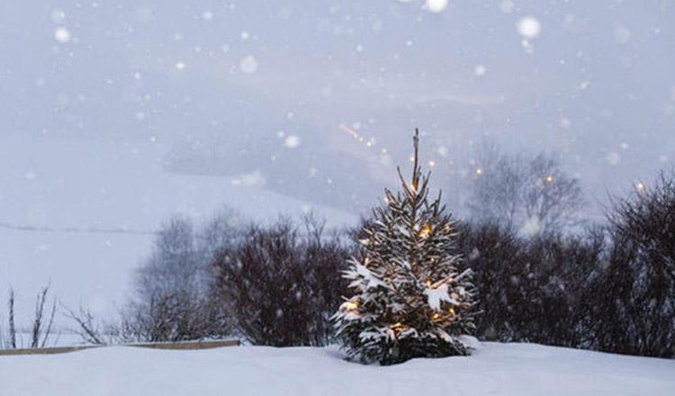 Ninge sau nu de Crăciun? Asta vrem să știm!