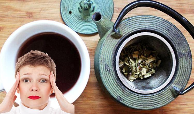 Cum te ajută salcia să scapi de durerile de cap!