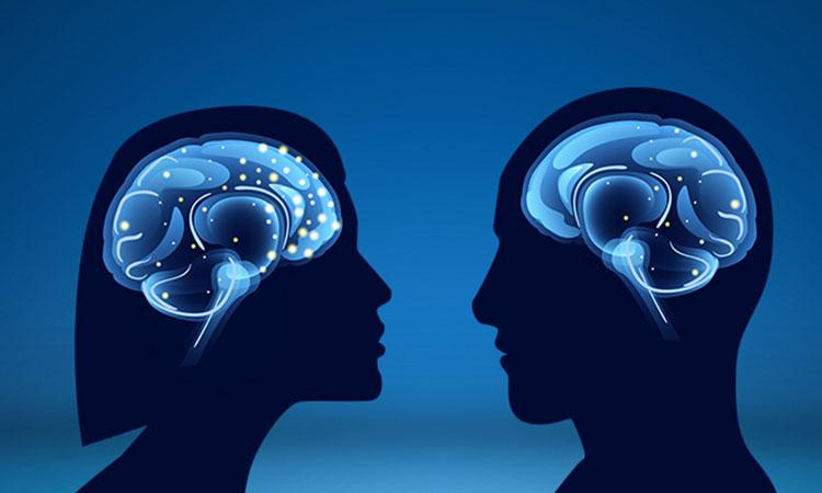 Studiile arată că femeile își folosesc mai mult creierul decât o fac bărbații