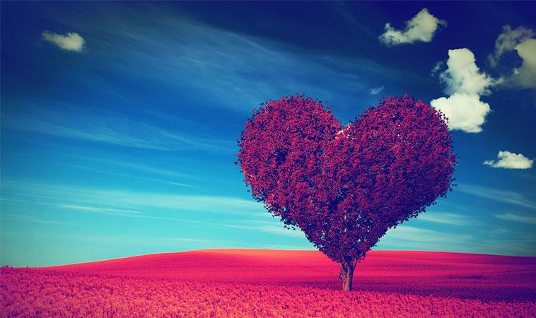 """Într-o lume care încearcă să te facă """"crud"""" și """"dur"""", tu ține-ți inima """"coaptă"""""""