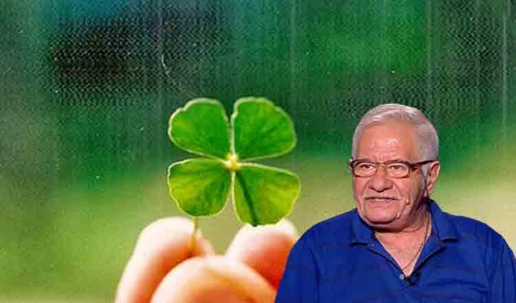 Care sunt plantele care ne aduc noroc în funcție de zodie, aflăm de la Maestrul Mihai Voropchievici