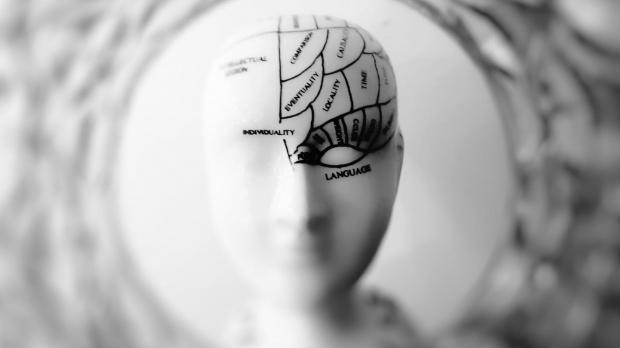 Creierul uman va putea fi conectat la internet în viitor. Oamenii de știință explică cum e posibil acest lucru