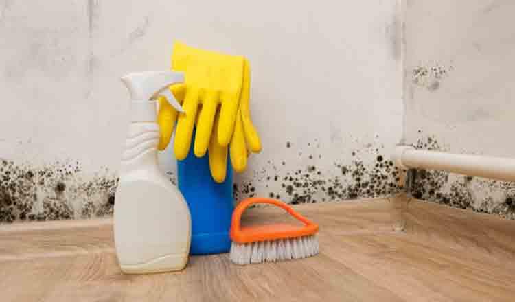 Curăță ușor pereții murdari dar și mucegaiul folosind un singur lucru
