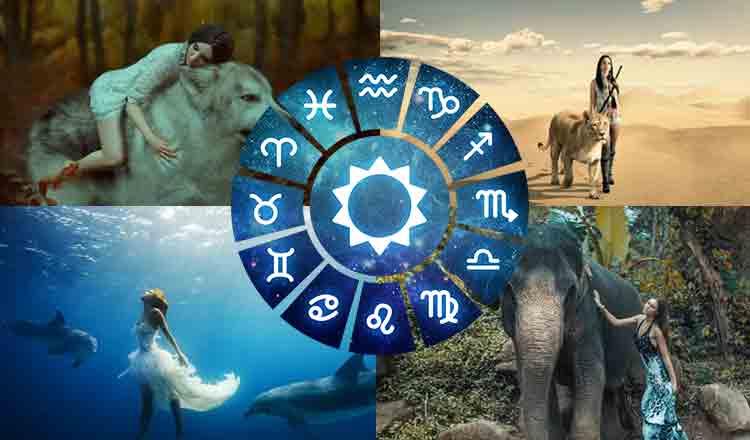 Ce animal spiritual ești în funcție de zodie. Echivalențe pentru toate zodiile