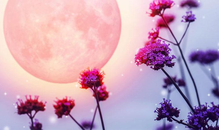 Horoscop mai 2019. O lună plină de energie pozitivă
