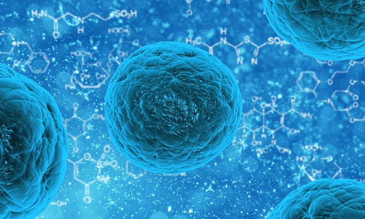 Celulele tale ascultă: iată cum te ajută modul în care conversezi cu corpul tău