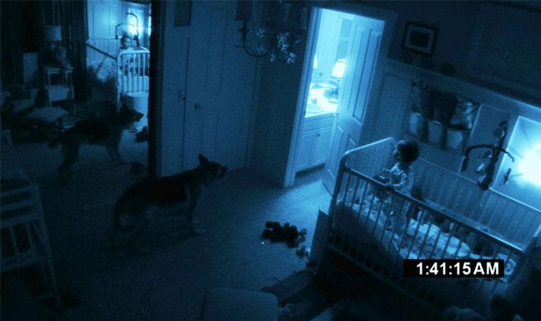 Oamenii de știință confirmă că pisicile și câinii pot vedea spirite pe care oamenii nu le văd