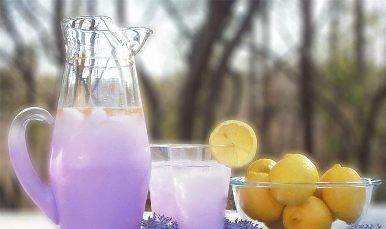 Cum să faci limonadă de lavandă, pentru a scăpa de durerile de cap și de anxietate